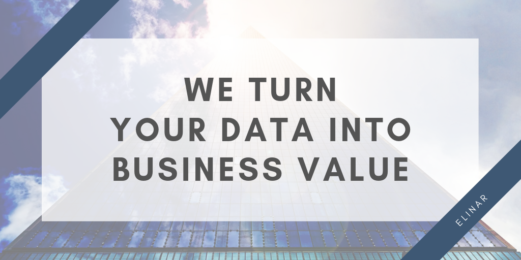We turn your data into business value