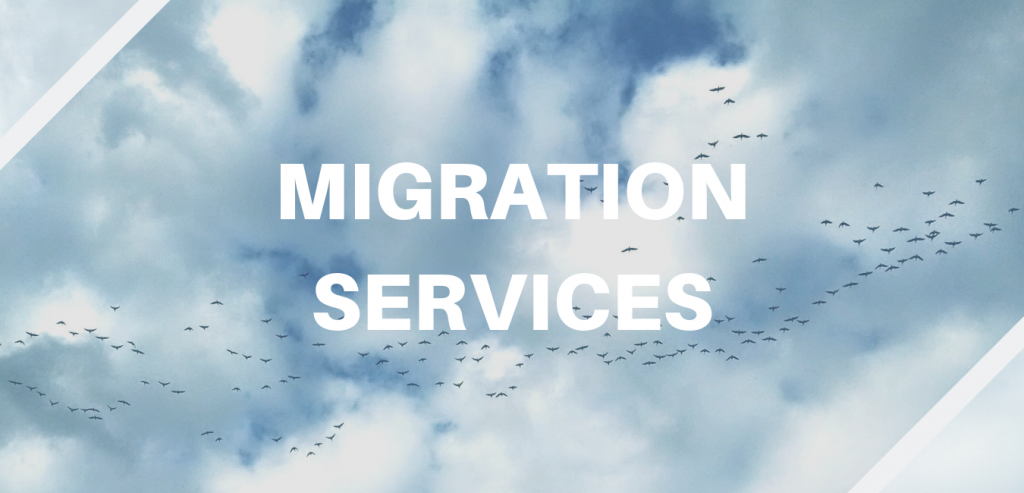 Migratory birds symbolize Elinar's migration services