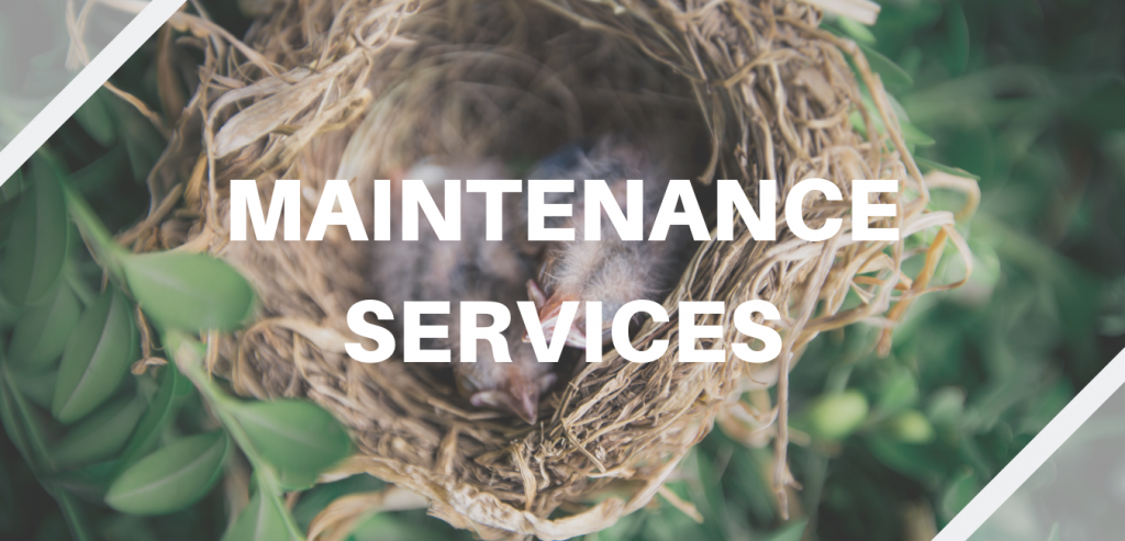 A bird's nest in a forest symbolizes Elinar's maintenance services