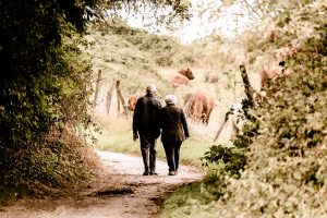 A retired couple walking in a forest.