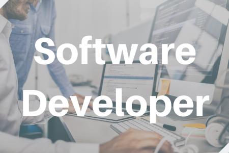 Elinar is hiring a Software Developer